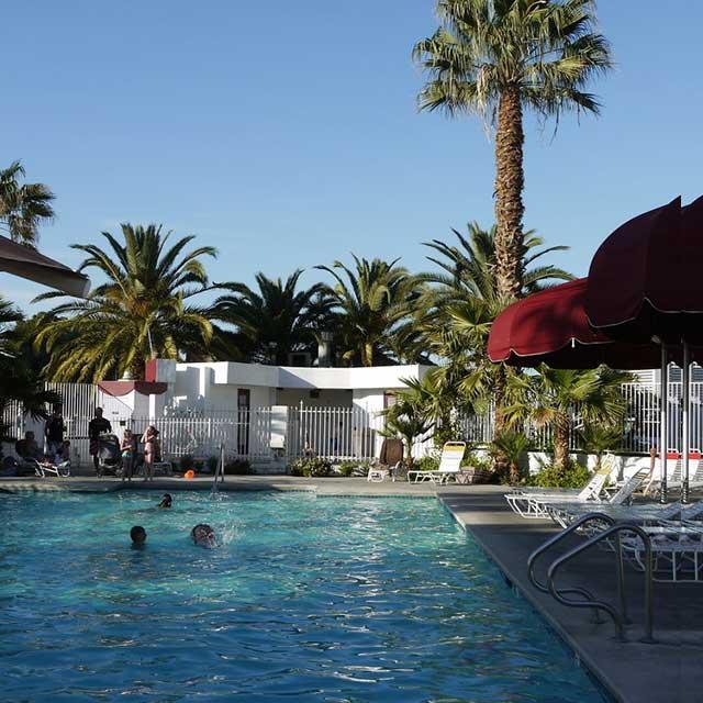 Circus Circus Pool Las Vegas KOA